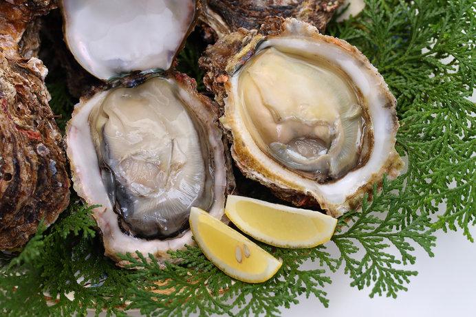 岩牡蠣の旬は夏。生食がおすすめ