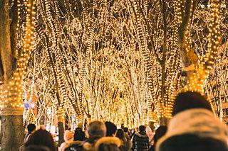 クリスマスにおすすめ!イルミネーション4選〈九州エリア編〉