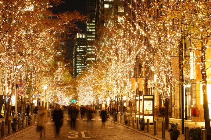 クリスマスイルミネーションで街路樹が一気に華やかに!