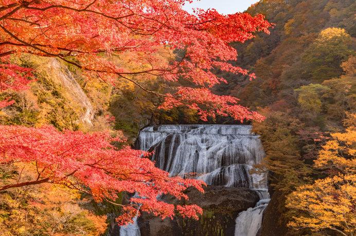 四季それぞれに美しい「袋田の滝」