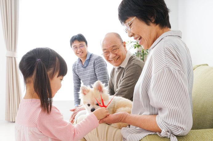 愛犬との旅行や帰省時に知っておきたい!〈交通機関でのマナー〉