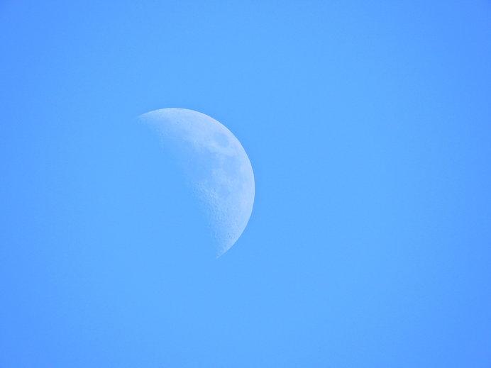 「椿説弓張月」へのこだわり