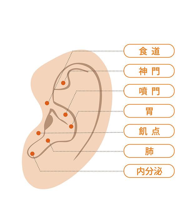 寒い時に体の中からじんわり温めてくれる、耳ツボマッサージ(tenki.jpサプリ 2018年11月18日) - 日本気象協会 tenki.jp