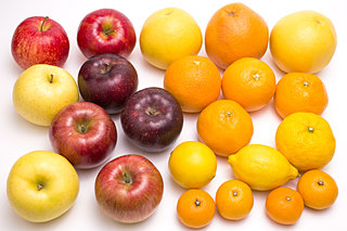 紅葉・銀杏に、林檎・蜜柑!秋冬の色彩を楽しもう!