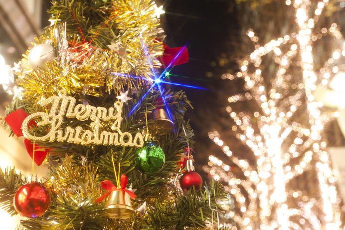 クリスマスが待ち遠しいですね!