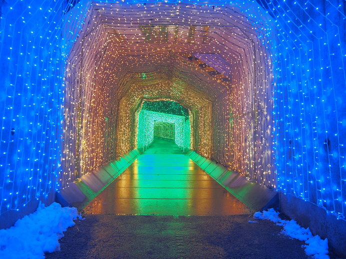 さがみ湖イルミリオン「光のトンネル」