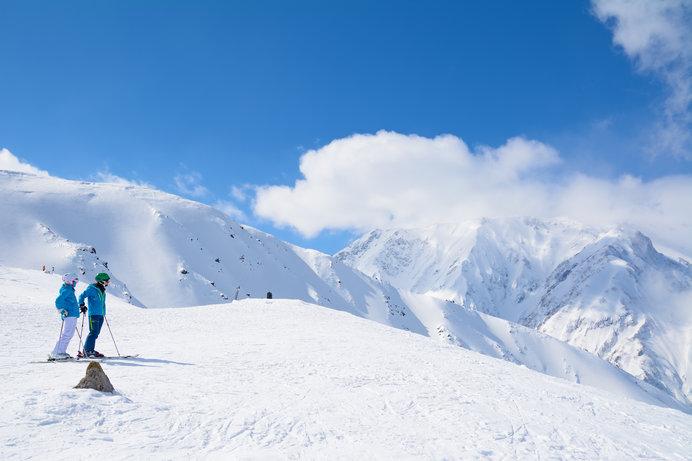 北アルプスの絶景、極上のパウダースノー、そして美味を求めて白馬八方尾根スキー場へ!