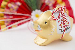 平成最後のお正月。明けましておめでとうございます