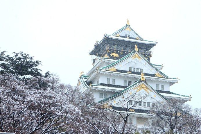 うっすらと雪化粧した、美しい大阪城