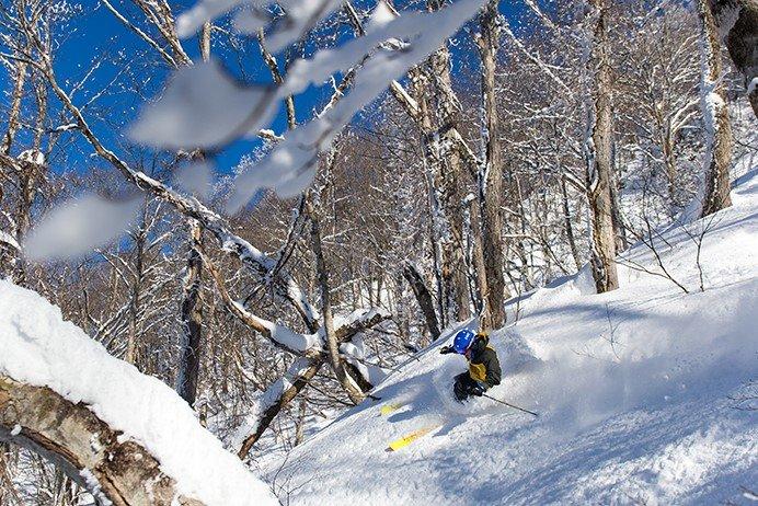 ジャストフィットだからチャレンジできる @タングラムスキーサーカス