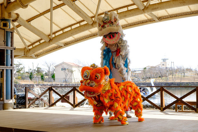中国の獅子舞はカラフル&アクロバティック!