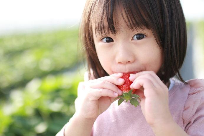 甘いいちごを見極めて……ガブリ! ※画像はイメージ