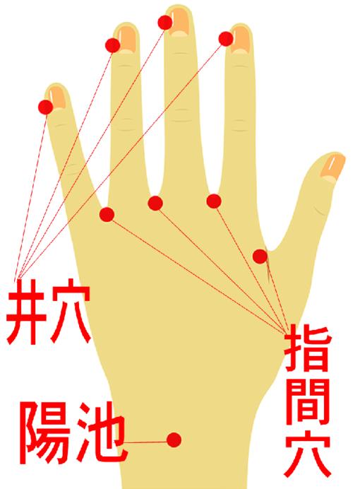 手のツボ【井穴】【指間穴】【陽池】