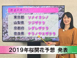 【動画で解説】日本気象協会から「第2回 2019年桜開花予想」発表!