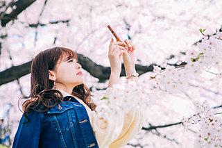 九州の桜観賞スポット!インスタ映えならこちらの4スポットへ♪