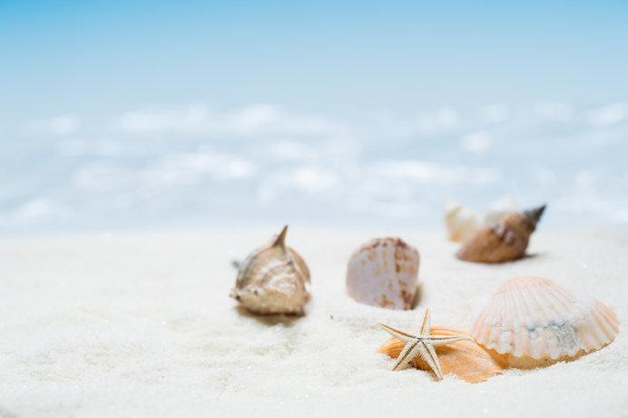 女性の生き方とは?この春、改めて読み返したい「海からの贈物」