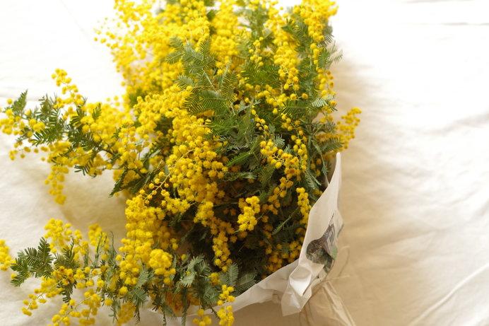3月3日は雛祭り、3月8日は国際女性デー。幸せの黄色い花咲く春の到来!_画像