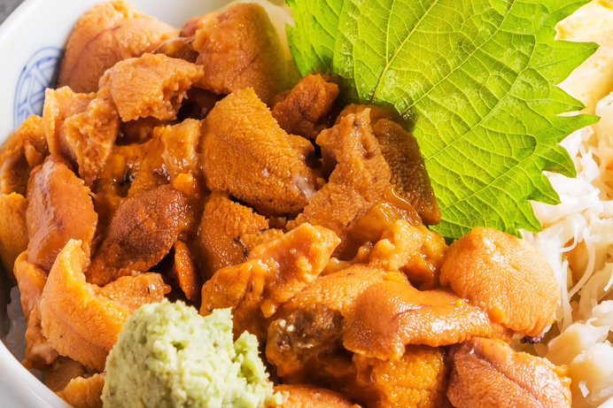 4月には「うに祭り」の開催を予定。ウニを食べつくす贅沢な祭り!!