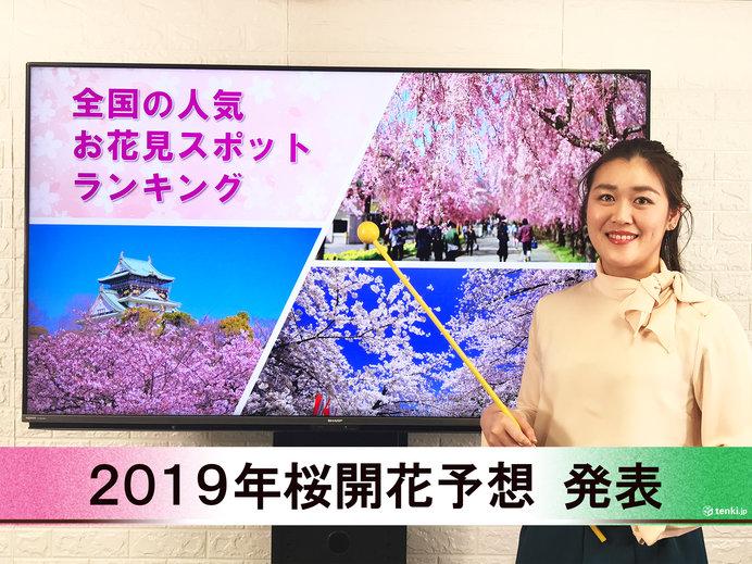 【動画で解説】日本気象協会から「第4回 2019年桜開花予想」発表!