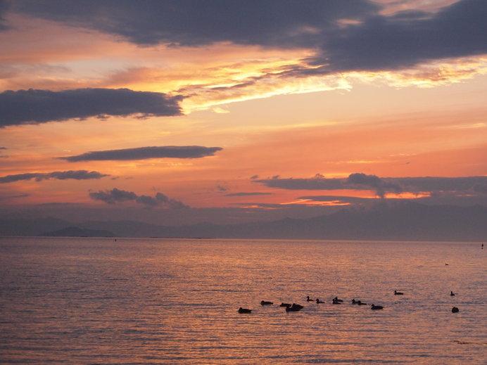 近江の海夕波千鳥汝が鳴けば心もしのにいにしへ思ほゆ