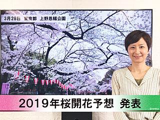 【動画で解説】日本気象協会から「第6回 2019年桜開花予想」発表!