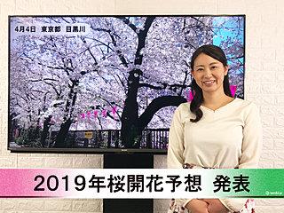 【動画で解説】日本気象協会から「第7回 2019年桜開花予想」発表!