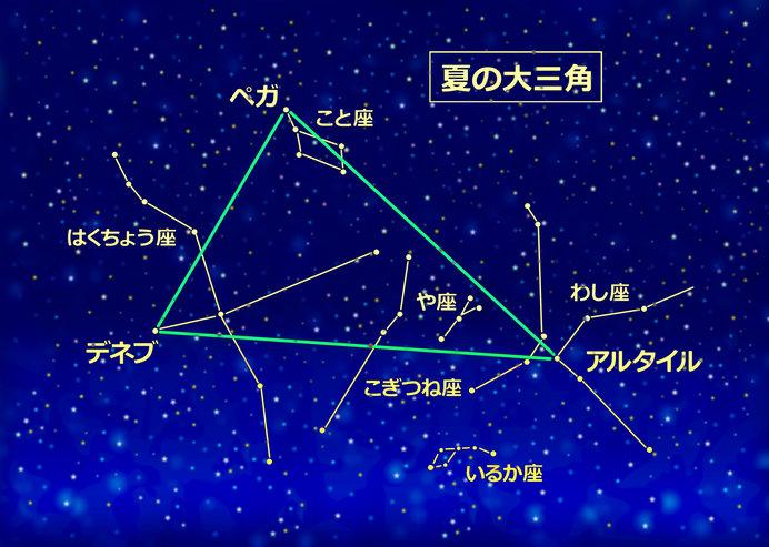 夏の大三角形を確認しながら見つけてみよう!