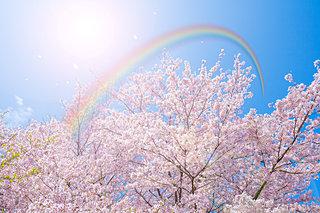 第十五候「虹始見(にじはじめてあらわる)」は二十四節気「清明」の末候です