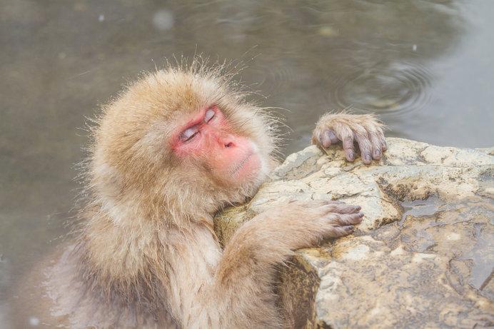 じっくりとお風呂に入る時間を取るのはなかなか難しいかもしれませんが、ぜひ、週に一度は試してみて