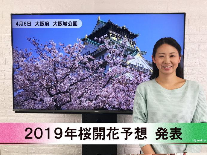 【動画で解説】日本気象協会から「第8回 2019年桜開花予想」発表!