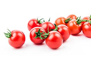 今が準備に最適!「カンタン袋栽培」でミニトマトを育てよう!
