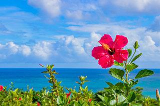 ココは行っとかなきゃ!西日本の海辺の絶景スポット