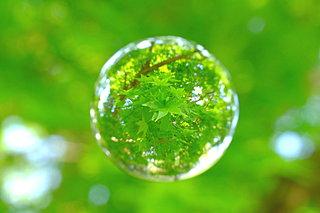 「知って得する季語」──梅雨シーズン到来!夏の雨の名前を覚えよう