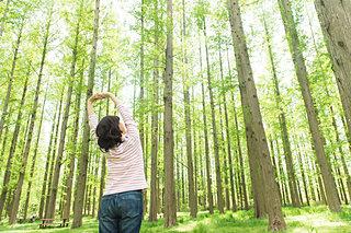 リフレッシュしたい!森林浴に出かけよう♫〈関東編〉