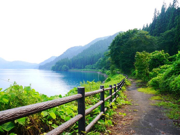 緑豊かな湖のほとりは、マイナスイオンたっぷり♪