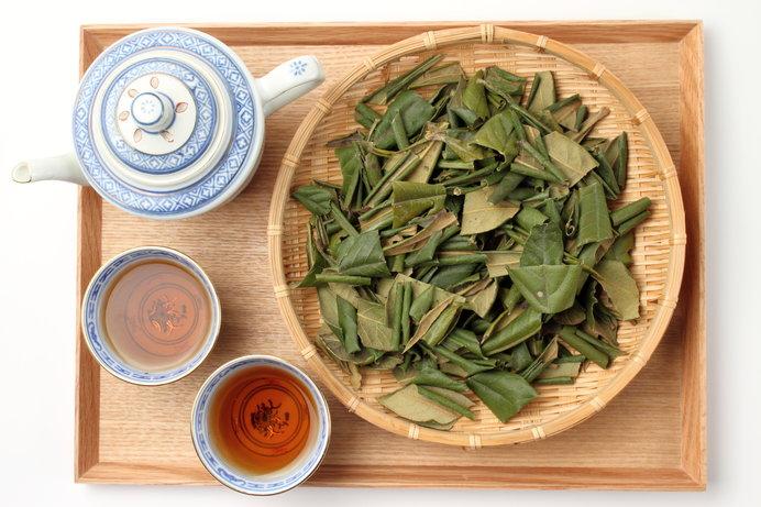 葉をカットして乾燥させ枇杷茶