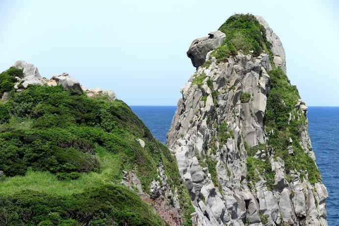 この岩、何かに似ていませんか?……そう、サル!