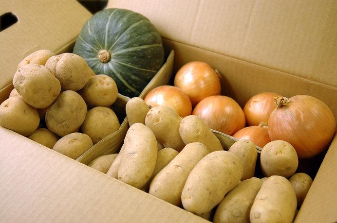 ジャガイモ、玉ネギ、カボチャのほかに、ニンジン、アスパラ、トウモロコシ、長イモなどなど