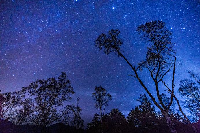 「満天の星空」「満天の星」「満点の星空」。正しいのはどれ?