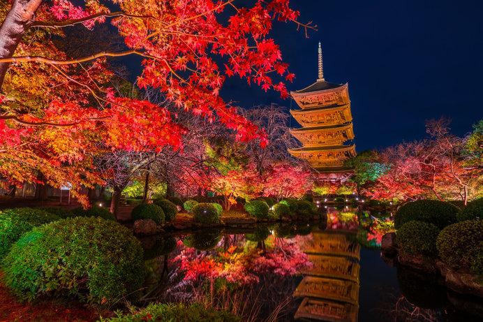 秋の「真言宗総本山東寺(教王護国寺)」から池越しに望む五重塔