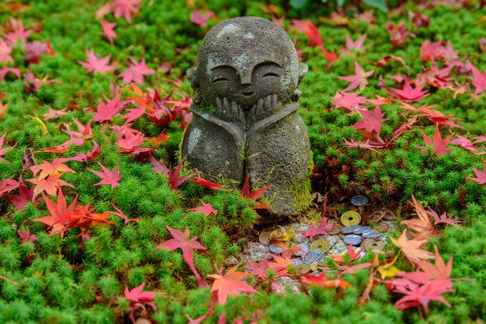 紅く色づいた紅葉と十牛之庭のお地蔵様も「圓光寺」の紅葉スポットです
