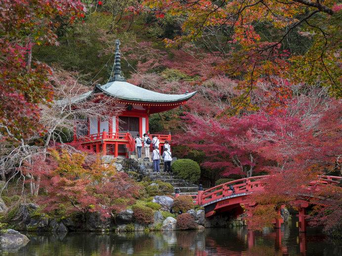 一幅の絵画のように美しい、秋の「醍醐寺」