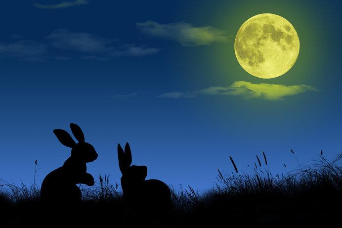 「知って得する季語」──日本人の月への愛がすごい!