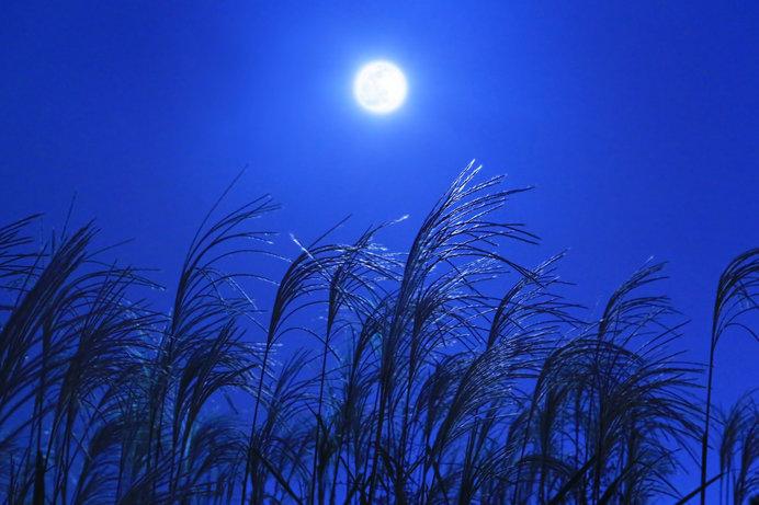 9月13日は中秋の名月。令和時代の美しい満月を、ぜひ鑑賞しよう!