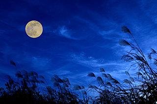 月が1年のうちで最も美しい日。今日は中秋の名月です