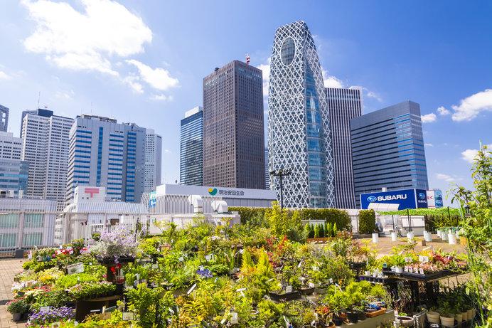 屋上庭園から見る新宿副都心のビル群