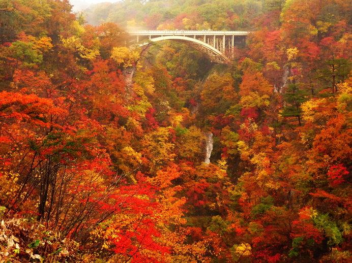 鳴子峡(宮城)/100mの深さのV字渓谷が赤く色づく