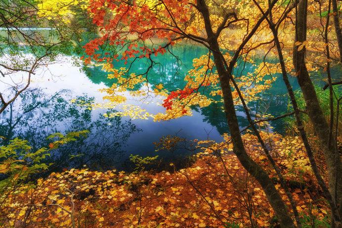 五色沼(福島)/青沼、赤沼、るり沼…。裏磐梯の神秘の湖沼群