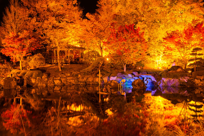 北関東の紅葉を見に行こう♪夜のライトアップも美しい紅葉名所4選