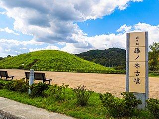 9月25日は「藤ノ木古墳記念日」。お彼岸の今、太古のご先祖に思いを馳せてみませんか